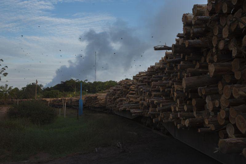 Trem carregado de eucalipto chega à fabrica de celulose do Projeto Jari, as margens do rio Jari, no Pará (AP). (Foto: Lalo de Almeida/Folhapress)