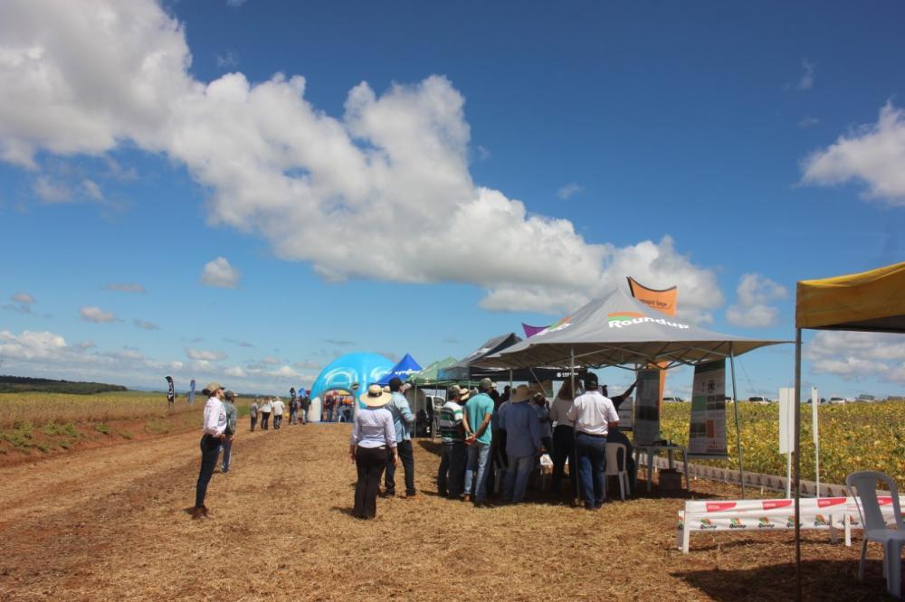 Participantes vão conferir espaços experimentais com as melhores tecnologias para a produção de trigo (Foto: Ozonio Imprensa)