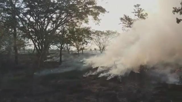 Incêndio atingiu uma área equivalente a mais de cinco campos de futebol, em Avaré (SP) — Foto: Reprodução/TV TEM