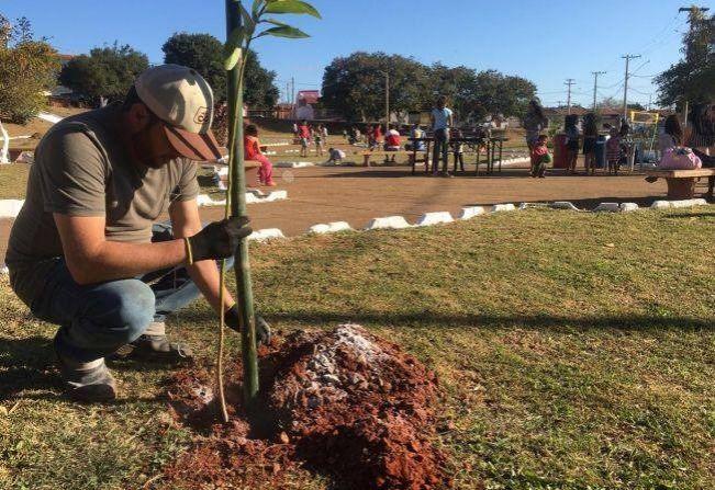 Prefeitura de Itapetininga realiza o plantio de mais de 3 mil árvores em diversos bairros