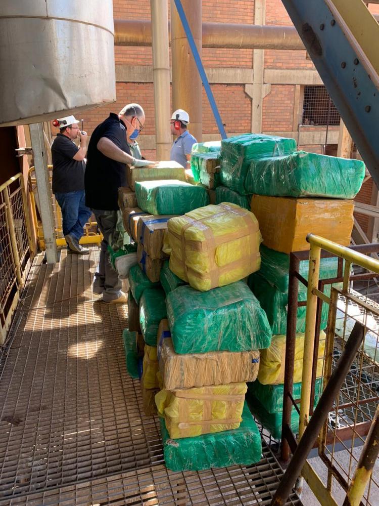 DISE incinera mais de 3 toneladas de maconha em menos de 24 horas após a apreensão